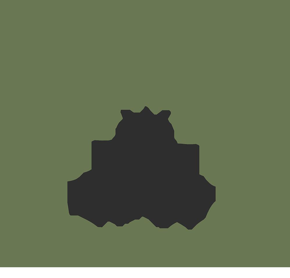 Bodhi Soul half